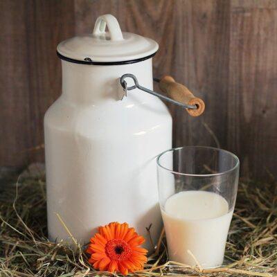 Quote latte: il Gip di Roma dispone l'archiviazione