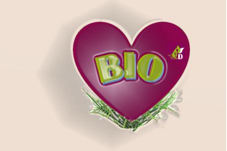 A Bologna, la 31^ edizione di SANA il Salone internazionale del biologico e del naturale.
