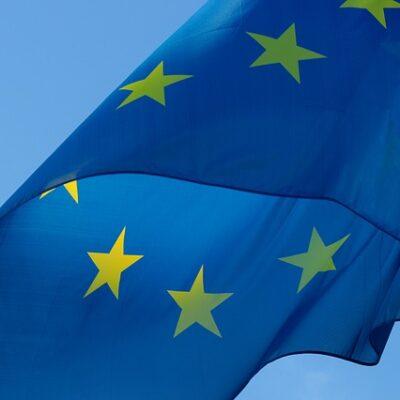 Primo ok per il Green Deal: mercato unico verde, deforestazione zero e nuove norme sull'etichettatura tra gli interventi sollecitati.