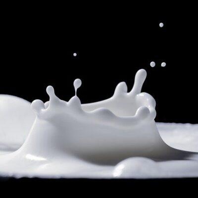 Filiera del latte: controlli, sanzioni e sequestri in Abruzzo